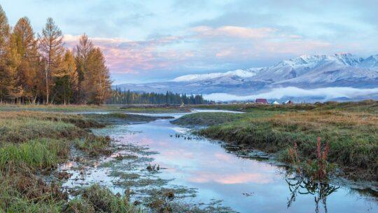 Altaj Rusland natur